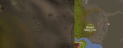 Fairy_ring_AJR.png