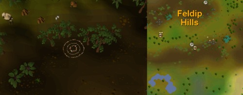 Fairy_ring_AKS.png
