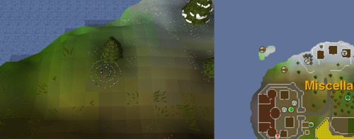 Fairy_ring_CIP.png