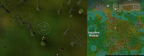 Fairy_ring_HW.png