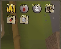 80-99%20thieving%20with%20double%20loot.jpg